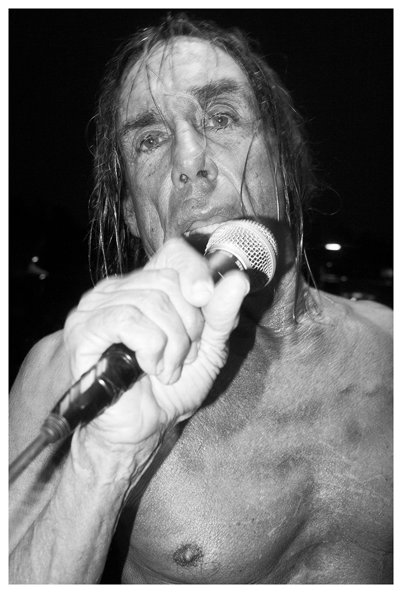Iggy Pop by Giorgio Serinelli