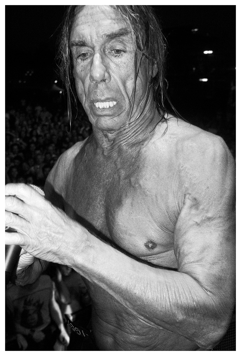 Iggy Pop by Gio Serinelli